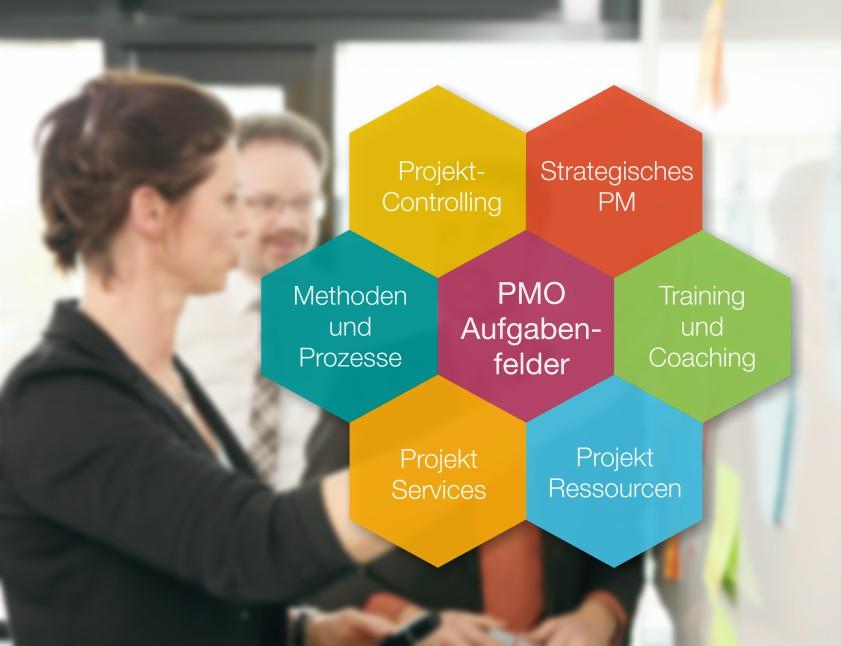 exekutives projektmanagement  project solutions